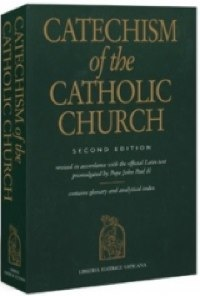 catechism in a year The Most Important Thing Youll Never Do for the Year of Faith