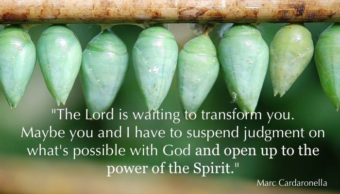 Transformation: Fruit of the Spirit